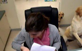 Secretary Dog