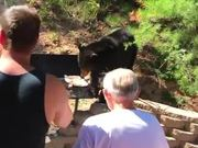 Bear Wants Barbeque
