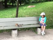 Pulling A Tooth Using A Squirrel