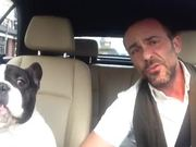 Dog And Owner Duet