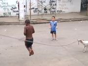 Dog Playing Jump Rope