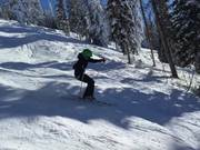 Winter and Skier
