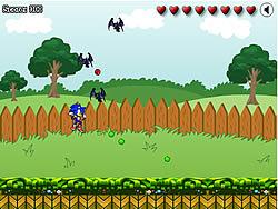 Sonic in Graden