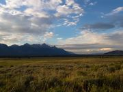 Grand Teton National Park: Living with Wildlife