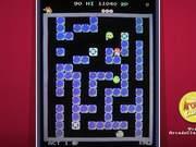 Pengo Arcade Game