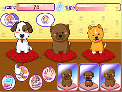Puppies Salon