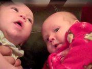 Sumo Ninja Babies