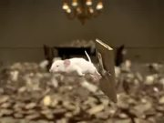 Kerry Foods LowLow Cheese Commercial Mouse trap