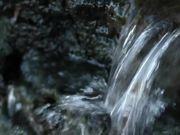 Fast Stream in Macro View