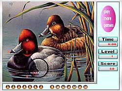 Fabulous Ducks Hidden Numbers