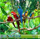 Zoo Hidden Object