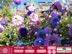 Flower Garden- Hidden Object