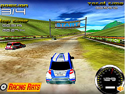 Rally Expedition 3D Game