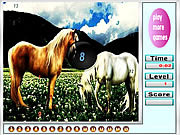 Fantastic horses hidden numbers