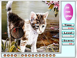 Melancholic cats hidden numbers