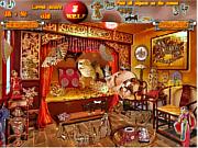 Chinese Shope Secrets