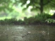 Beautiful Raindrops in Slow Motion