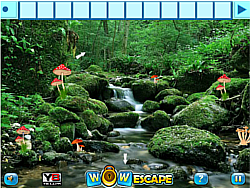 Adventure Forest Escape