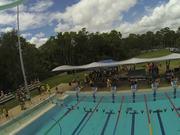 king's swimming carnival 2014