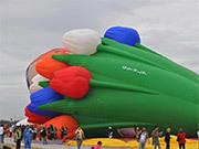 Hot Air Balloon summer Festival Tour
