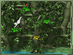 Yeti Sports (Part 8) - Jungle Swing