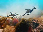 BBC Commercial: Wonderful World