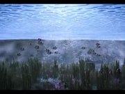Animation of Villas