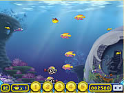 Play Growing fish Game