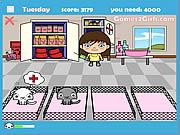 Play Veterinarian Game