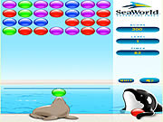 Play Splash blast Game