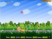 juego Flower Catcher