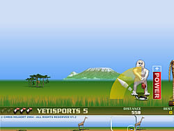 Gioca gratuitamente a Yeti Sports (Part 5) - Flamingo Drive