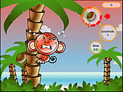 Play Cocoon island Game