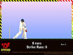 Permainan Top Spinner Cricket