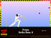 Play Top spinner cricket Game