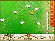 Sheep Shepherd game