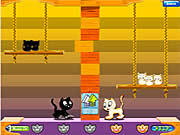 Play Swing cat Game