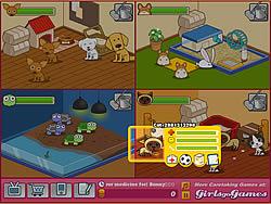 เล่นเกมฟรี Animal Shelter