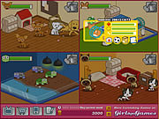 Play Animal shelter Game