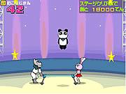 Play Panda circus Game