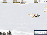 Ski Sim game