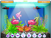Play My lovely aqua Game