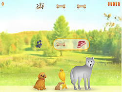 Snack Time Game game