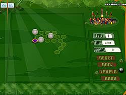 Native Land game
