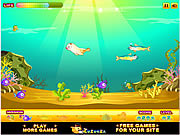 Play Seal growing Game