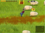 Play Pig trouble Game