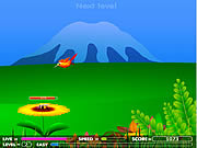 Play Hunny frenzy Game