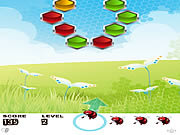 Play Umbel bee Game