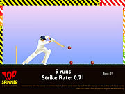 Play Cricket Game