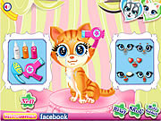 Play Pets beauty salon Game